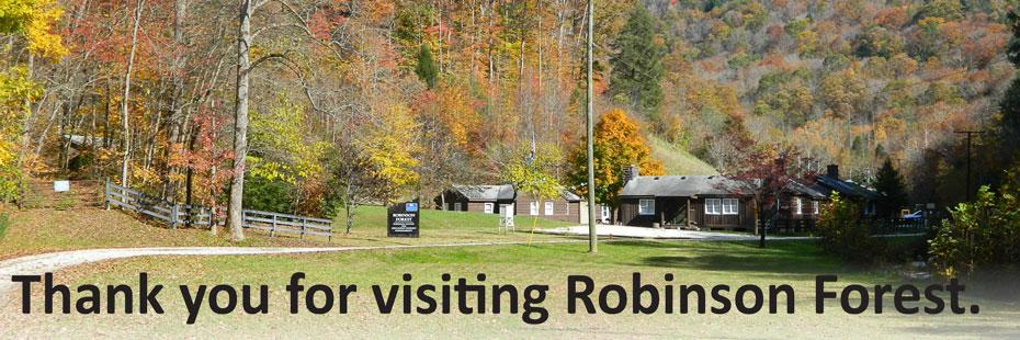 Thanks for visiting Robinson Forest.